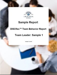 Try out the report on the market, DISCflex Team Behavior Report.