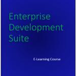 Online Executive Coaching eLearning
